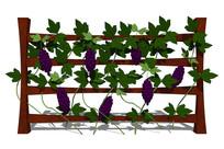 庭院植物木护栏