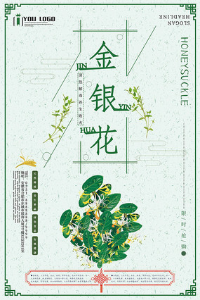简约中国风金银花宣传海报