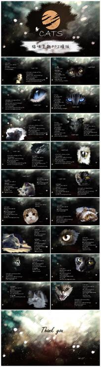 猫咪主题PPT模板 pptx