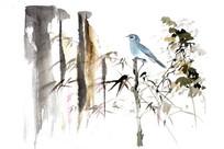 国画小鸟插画素材