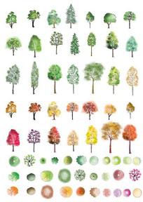 清新手绘风格植物素材 JPG