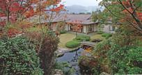 日式庭院水池 JPG