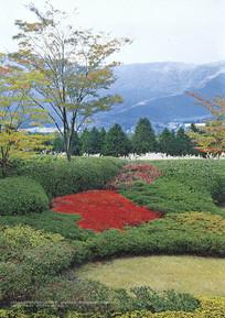 自然式园林景观 JPG