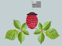 某草莓生产商标SU