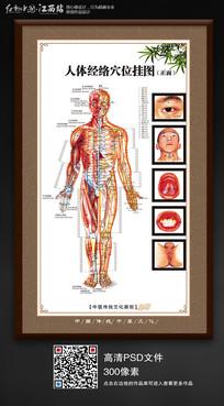 人体经络穴位挂图