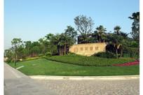 logo墙植物配置