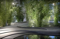 曲型水上张树池意向图  JPG
