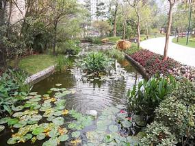 小区溪流景观