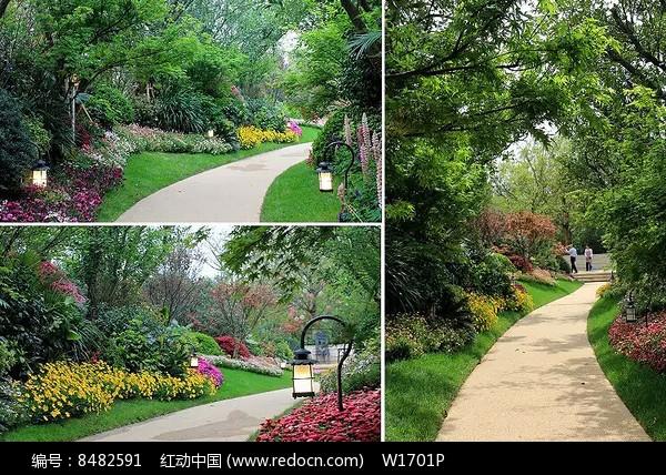 园路花境景观景观设计宣传画册图片