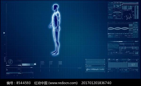 人体写真视频高清下载_现代科技人体科学研究医学扫描视频