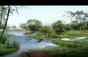 野外水塘树木田园风光