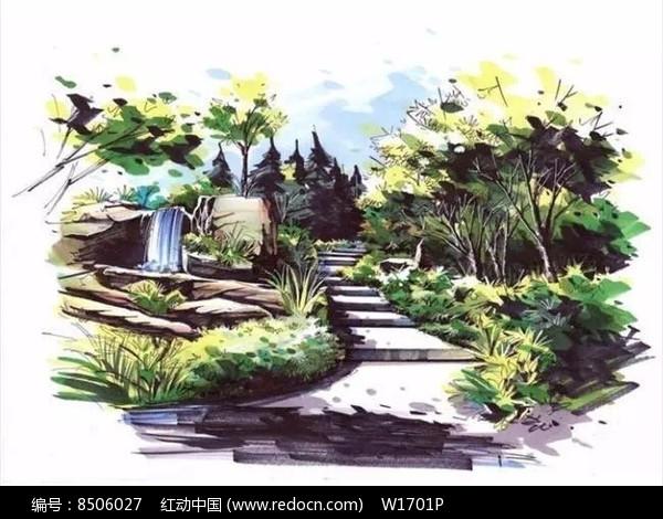 植物配置手绘效果图图片