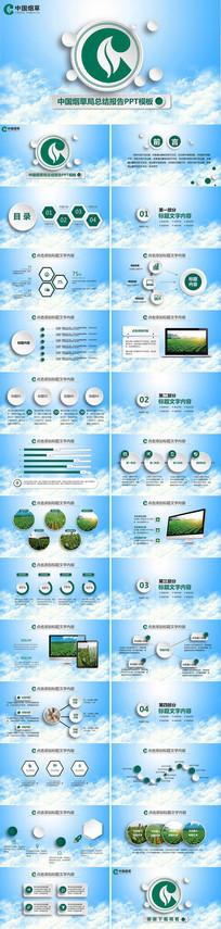 中国烟草工作总结汇报PPT
