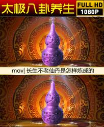 紫葫芦视频背景