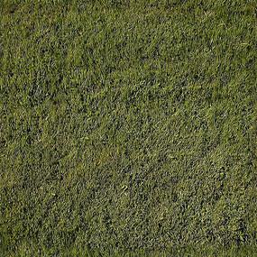 草地平面贴图