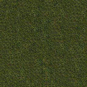 草地贴图素材