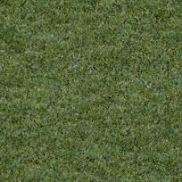 常见草坪平面贴图
