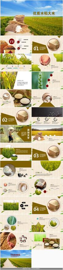 粮食丰收水稻大米PPT模板 pptx