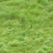 青草地贴图
