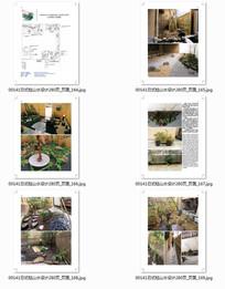 日式组合小庭院