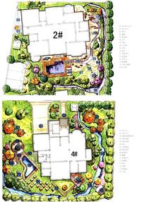 别墅庭院景观彩平图 JPG