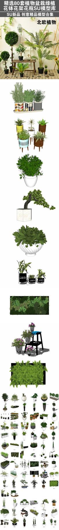 精选80套植物花卉花盆