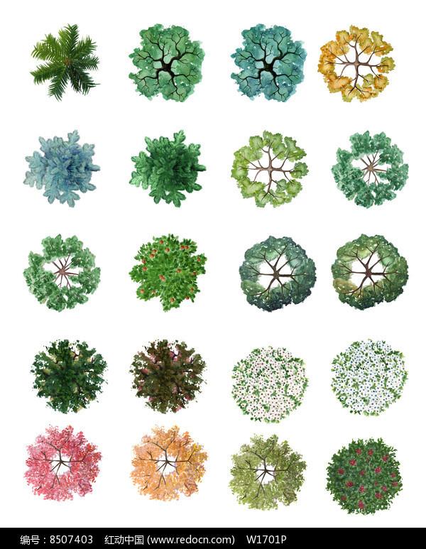 水彩手绘风格ps植物平面图例PSD素材下载 编号8507403 红动网