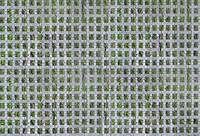 常见植草砖平面贴图