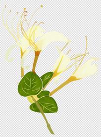 金银花透明背景不分层素材