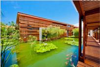 池塘景观木廊道意向