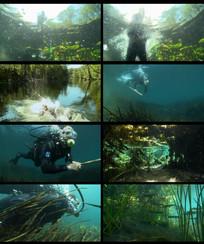 潜水视频素材