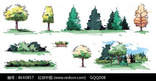 景观单体植物手绘合集图片