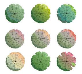 植物平面手绘ps素材设计素材专辑(42张)图片