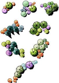 手绘植物组团分层素材 PSD