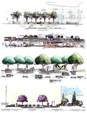 圆形棕榈广场种植池
