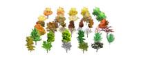 秋天的2D树木素材集合