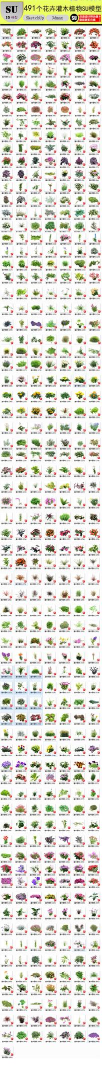 花卉灌木植物su模型 skp