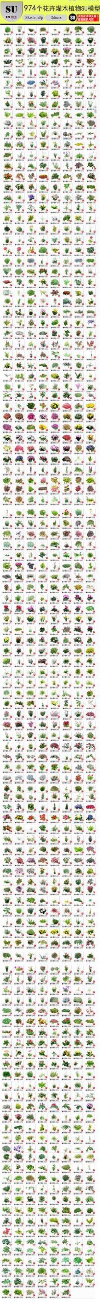 花卉灌木植物组件模型 skp