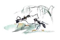 春天的蚂蚁插画
