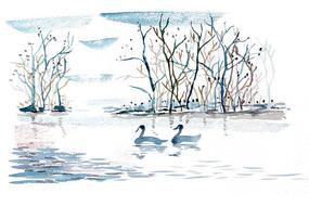 小树林里的天鹅插画 PSD