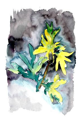 雨中的花插画 PSD