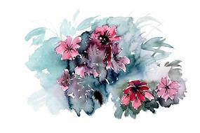 雨中花卉插画 PSD