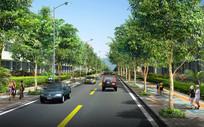 车道两侧绿化设计效果图 JPG