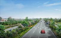 城市道路绿化提升效果图 JPG