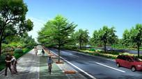 城市道路植物组团设计 JPG