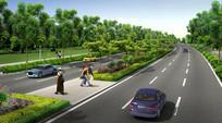 道路绿化带设计效果 JPG
