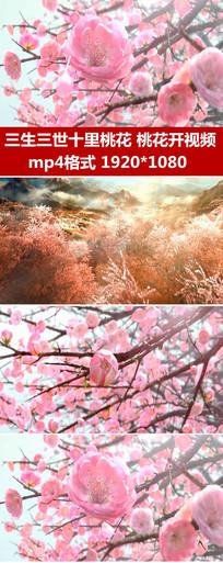 三生三世十里桃花舞蹈背景视频