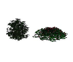 球状灌木SU模型