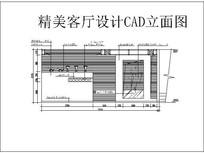 精美客厅设计CAD立面图