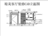 精美客厅装修CAD立面图